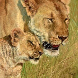 Motherly Love II by Tony Forrest -  sized 16x16 inches. Available from Whitewall Galleries